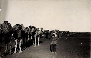 Foto Ak Syrien, Colonne francais, Französischer Konvoi, Kamele, Drusen, Syrische Revolution 1925