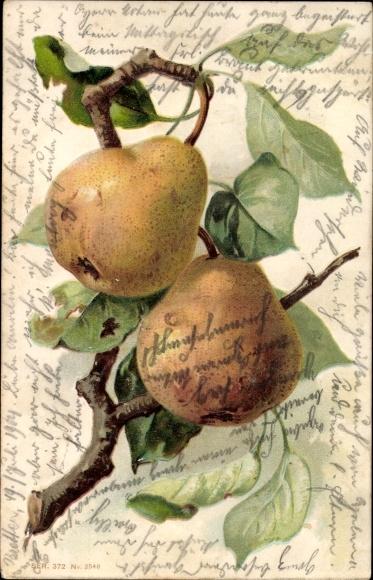 Präge Litho Zwei Birnen an einem Zweig, Blätter, Obst