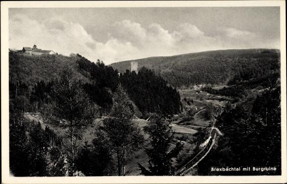 Ak Höhr Grenzhausen im Westerwaldkreis, Brexbachtal mit Burgruine