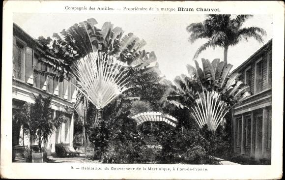Ak Fort de France Martinique, Habitation du Gouverneur, Baum der Reisenden