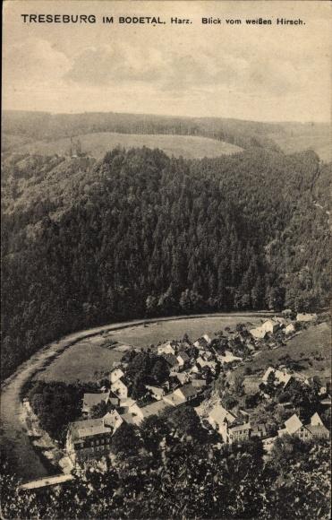 Ak Treseburg Thale im Harz, Blick vom weißen Hirsch ins Bodetal, Ortschaft