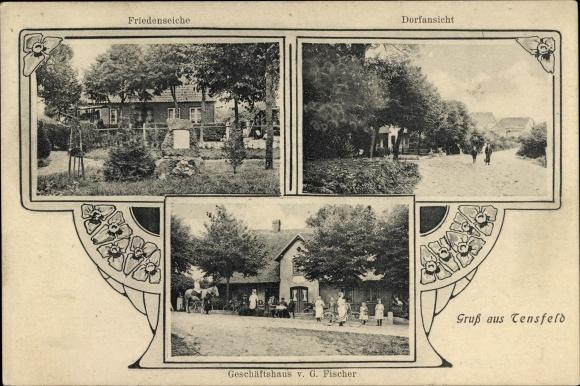 Ak Tensfeld in Schleswig Holstein, Geschäftshaus von G. Fischer, Friedenseiche, Dorfansicht