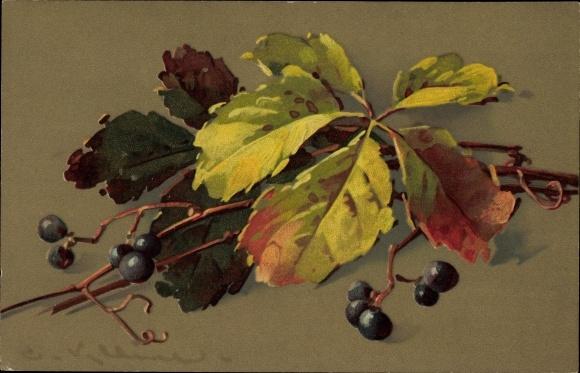 Künstler Ak Klein, Catharina, Wildbeeren mit Blättern, Meissner & Buch 1862, Herbstlaub