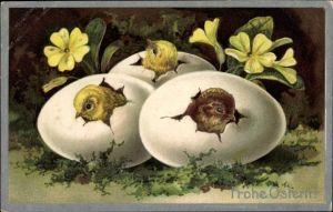 Präge Litho Glückwunsch Ostern, Küken schlüpfen aus Ostereiern