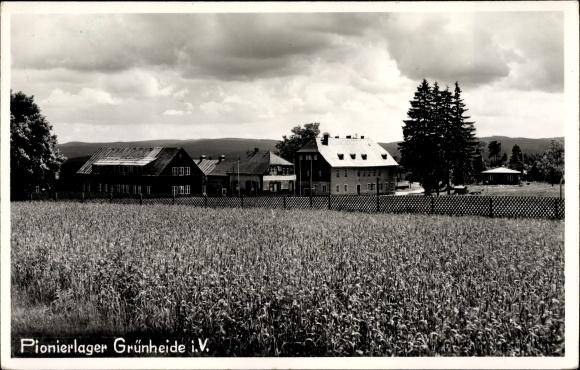 Ak Grünheide Auerbach im Vogtland, Blick über ein Feld zum Pionierlager
