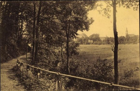 Ak Königsbrück in der Oberlausitz, Waldpartie an der Promenade, Teilansicht von der Ortschaft