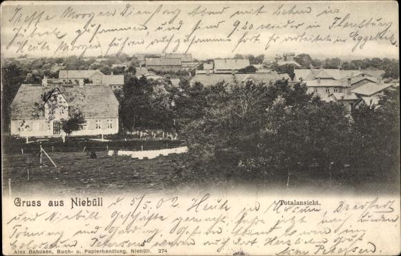 Ak Niebüll in Nordfriesland, Gesamtansicht des Ortes, Wohnhäuser