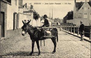 Ak Bruges Brügge Flandern Westflandern, Jeune Laitier Flamand, Milchhändler auf einem Esel