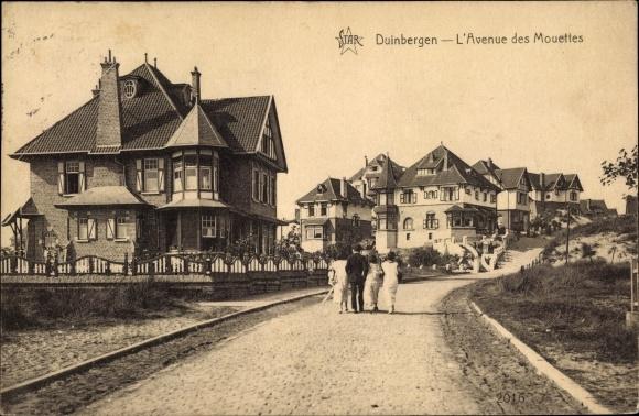 Ak Duinbergen Knokke Heist Westflandern, L'Avenue des Mouettes, Straßenpartie