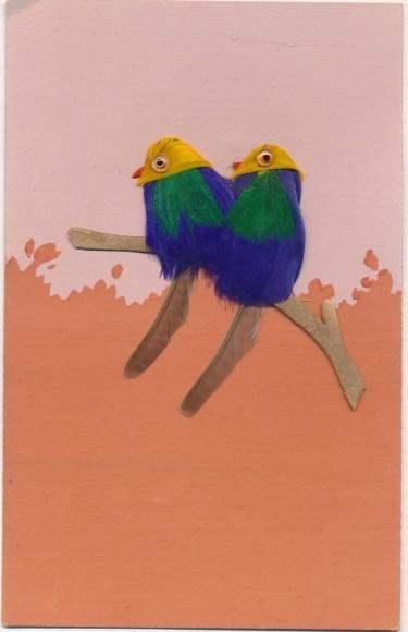 Material Ak Zwei Papageien sitzen auf einem Ast