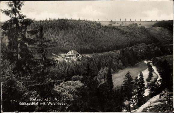 Ak Netzschkau im Vogtland, Blick in das Göltzschtal mit Waldfrieden