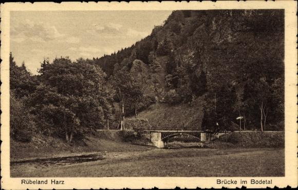 Ak Rübeland Oberharz am Brocken, Brücke im Bodetal