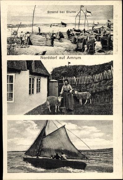 Ak Insel Amrum in Nordfriesland, Strand bei Sturm, Schafe, Segelboot