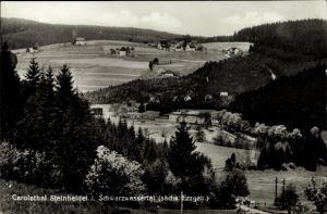 Ak Steinheidel Breitenbrunn im Erzgebirge, Carolatal, Schwarzwassertal, Wohnhäuser