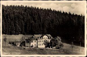 Ak Steinheidel Breitenbrunn im Erzgebirge, Gasthof Steinheidel, Inh. A. Netuschil