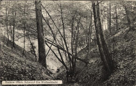 Ak Buckow in der Märkischen Schweiz, Partie in der Wolfsschlucht