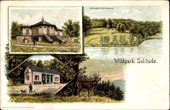 Künstler Stuttgart künstler litho wanner e stuttgart in baden württemberg wildpark