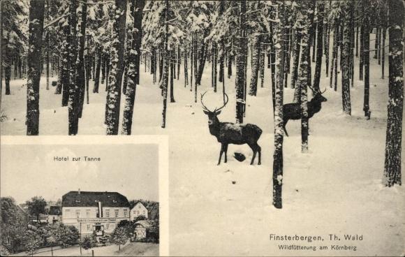 Ak Finsterbergen Friedrichroda Thüringen, Hotel zur Tanne, Wildfütterung am Körnberg