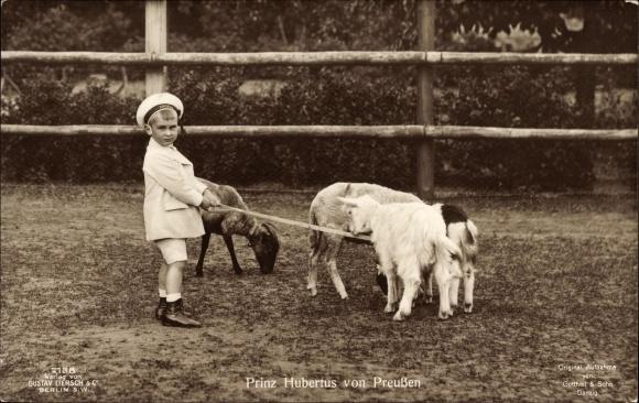 Ak Prinz Hubertus von Preußen mit Ziegen, Matrosenanzug, Liersch 7138