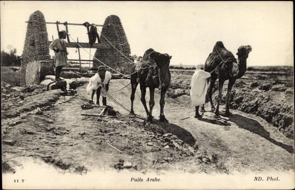 Ak Puits Arabe, Araber mit Kamelen am Brunnen, Maghreb