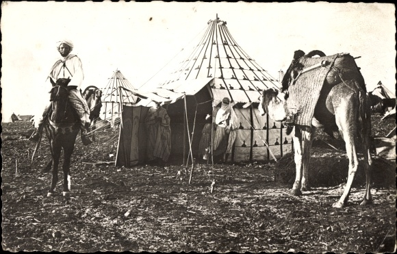 Ak Scenes et Types, Araber auf einem Pferd, Zelt, Kamel