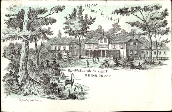 Litho Hamburg Wandsbek Volksdorf, Hotel Waldesruh, Heinr. Grund