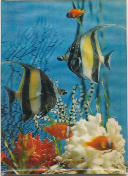 3-D Ak Verschieden Fische im Meer mit Korallen