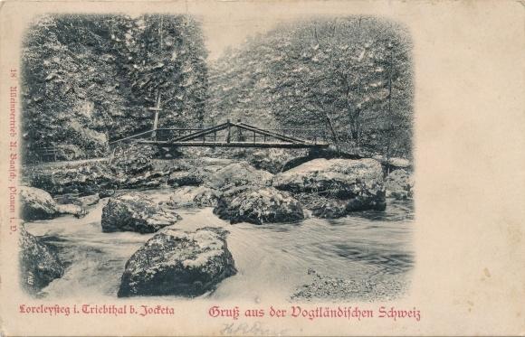 Relief Ak Jocketa Pöhl Vogtland, Loreleysteg, Triebtal, Vogtländische Schweiz