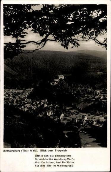 10 alte Ak Schwarzburg in Thüringen, diverse Ansichten 9