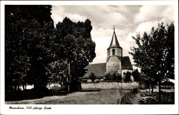Ak Meimsheim Brackenheim an der Zaber Kreis Heilbronn, 1000 jährige Linde, Kirche