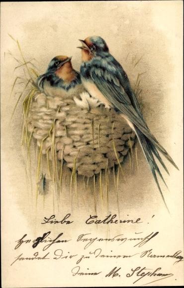 Ak Zwei Schwalben am Nest