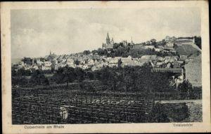 Ak Oppenheim am Oberrhein, Totalansicht der Ortschaft, Feld, Kirche, Häuser