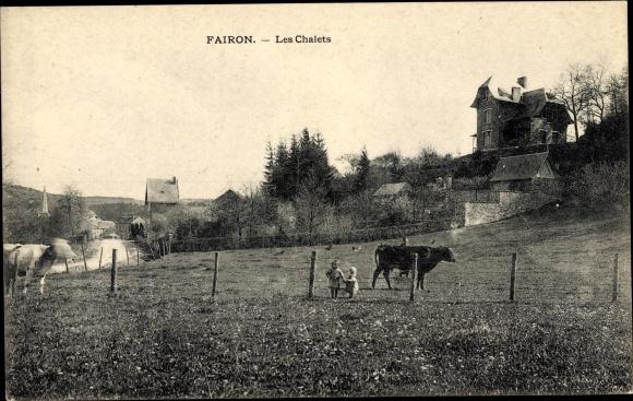 Ak Fairon Hamoir Wallonien Lüttich, Les Chalets, Kinder auf einer Kuhweide
