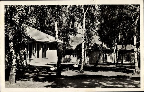 Ak Elstal Wustermark Brandenburg, Olympisches Dorf, Wohnhäuser im Birkenwald, Olympia 1936