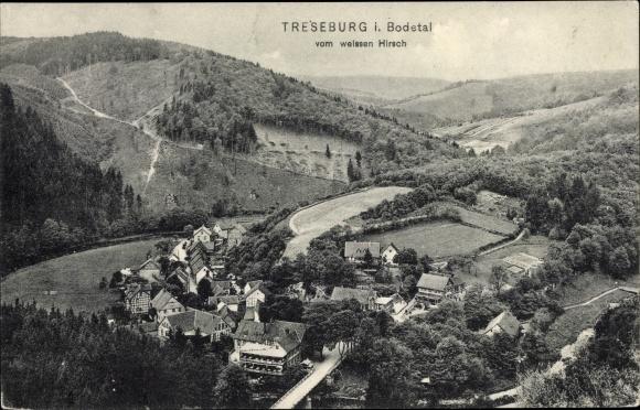 Ak Treseburg Thale im Harz, Blick auf den Ort vom weißen Hirsch