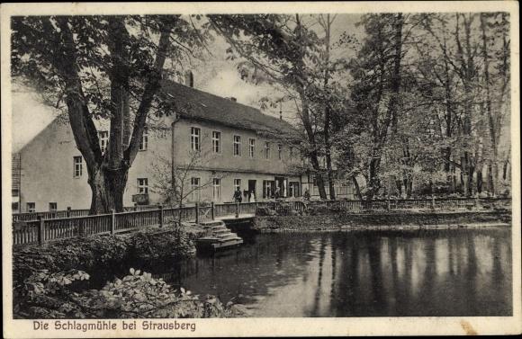 Ak Strausberg im Kreis Märkisch Oderland, Teichpartie mit Blick zum Gasthaus Schlagmühle, O. Hedrich