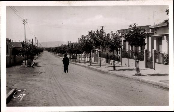 Ak Sétif Algerien, Rue Léon Gambetta, Straßenpartie