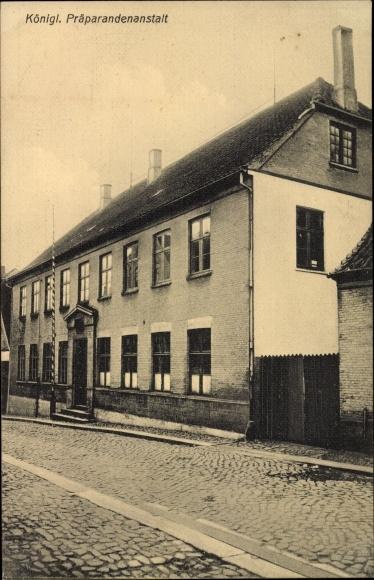Ak Aabenraa Dänemark, Königliche Präparandenanstalt