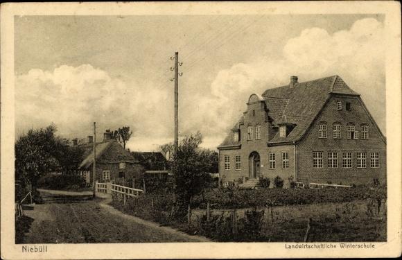 Ak Niebüll in Nordfriesland, Blick auf die landwirtschaftliche Winterschule