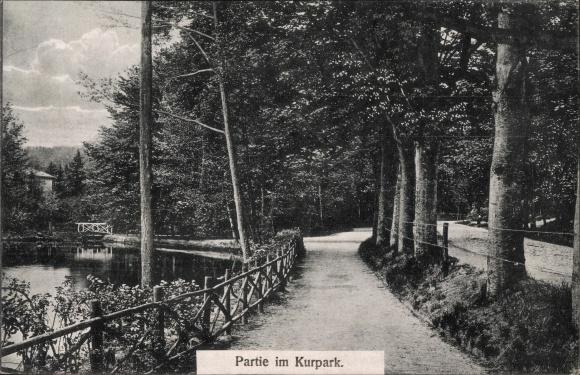 Ak Bad Freienwalde an der Oder, Partie im Kurpark
