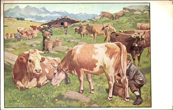 Künstler Ak Bauer beim Kühe Melken, Meinholds Tierbilder