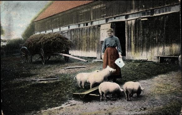 Ak Bauernhof, Bäuerin füttert die Schweine