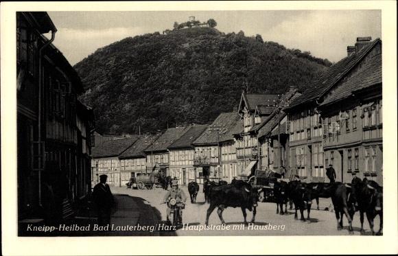 Ak Bad Lauterberg im Harz, Hauptstraße mit Hausberg, Rinder