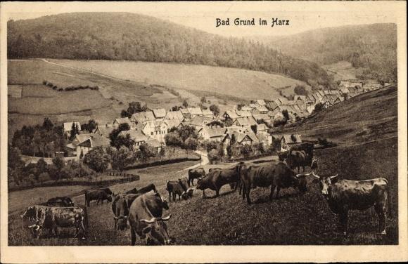 Ak Bad Grund im Harz, Teilansicht vom Ort, Rinder
