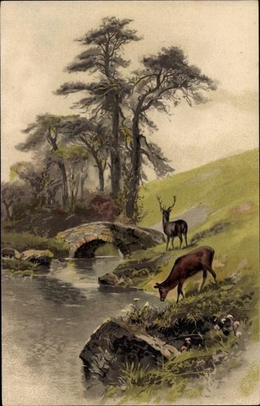 Künstler Ak Hirsche am Wasser, Brücke, Meissner & Buch 1404, Waldesfrieden