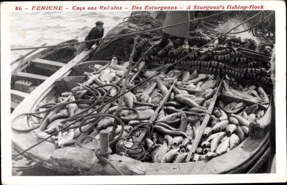Ak Peniche Portugal, Caca aos Robalos, des Esturgeons, a sturgeon's fishing flock, Fischerboot