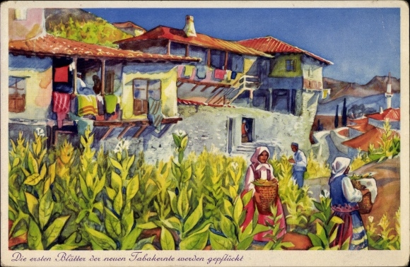 Künstler Ak Melnik Bulgarien, Tabakernte, Bauern, Häuser, Balkone