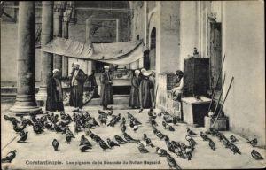 Ak Konstantinopel Istanbul Türkei, Les pigeons de la mosquée du Sultan Bayazid