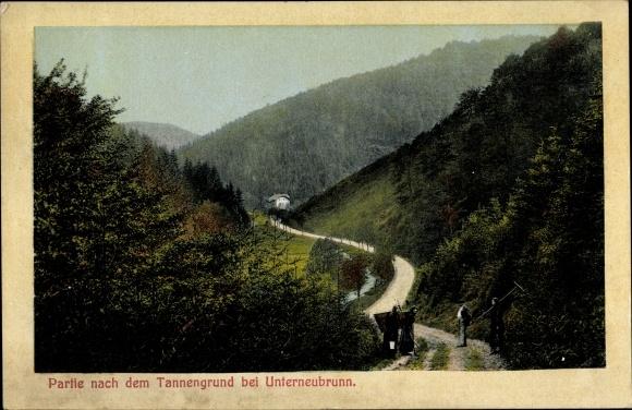 Ak Unterneubrunn Schleusegrund Thüringen, Partie nach dem Tannengrund, Waldlandschaft