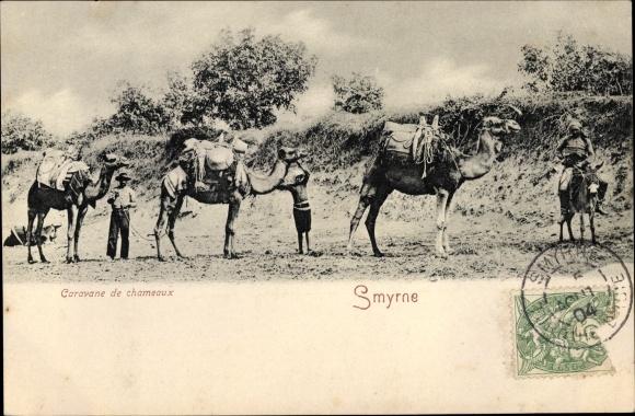Ak Smyrna Izmir Türkei, Caravane de chameaux, Kamele, Karawane